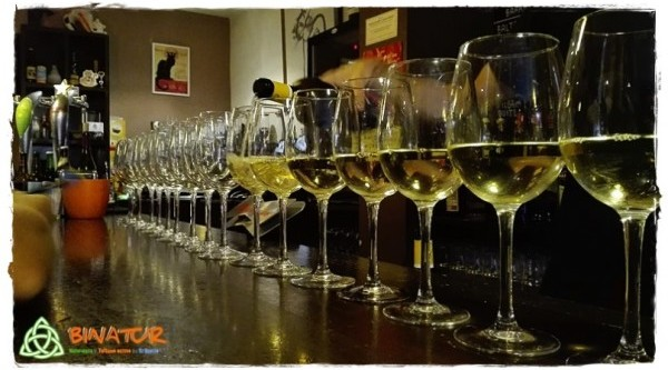 ruta de vinos y cortos ponferrada